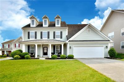 Davidson Single Family Home Under Contract-Show: 10923 Hat Creek Lane