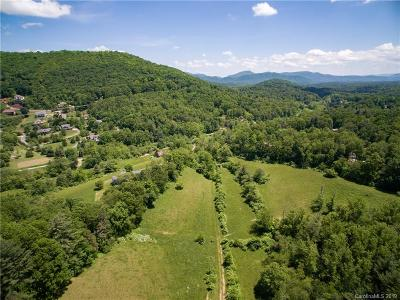 Buncombe County, Haywood County, Henderson County, Madison County Residential Lots & Land For Sale: 180 Pinners Cove Road