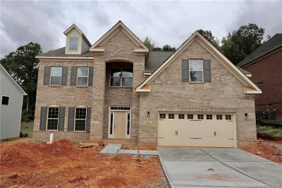 Fort Mill Single Family Home For Sale: 491 Kimbrell Crossing Drive #28