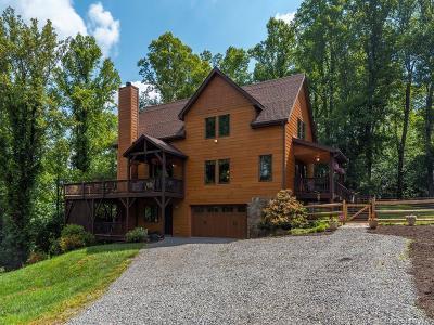 Asheville Single Family Home For Sale: 28 Windy Ridge Trail