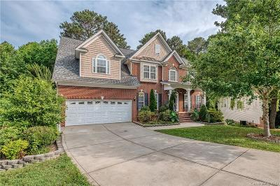 Indian Trail Single Family Home For Sale: 1020 Summer Creste Drive