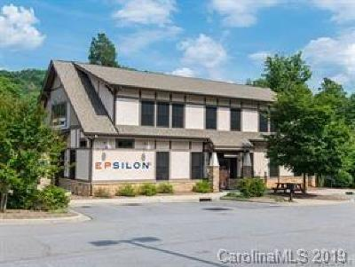Buncombe County Commercial For Sale: 1 Monticello Village Drive