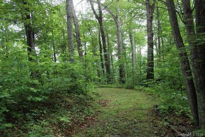Buncombe County, Haywood County, Henderson County, Madison County Residential Lots & Land For Sale: Forest Brook Drive