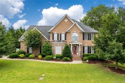 Waxhaw Single Family Home For Sale: 1905 Astrid Court