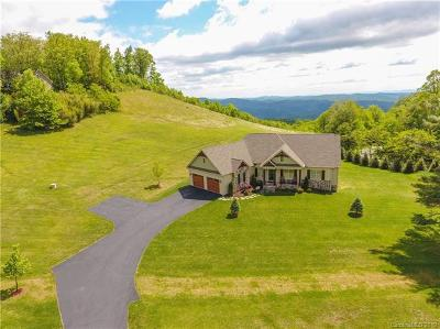Watauga County Single Family Home For Sale: 120 Tuckwiller Lane