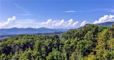 Waynesville Single Family Home For Sale: Hermitage Ridge #10