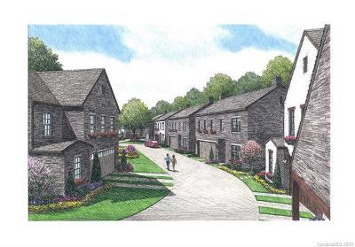 Davidson Single Family Home For Sale: 648 Catawba Avenue #14