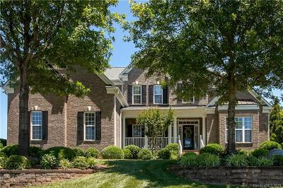 Davidson Single Family Home For Sale: 134 Timberside Drive