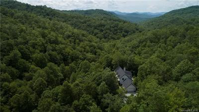 Transylvania County Single Family Home For Sale: 876 Fjord Road