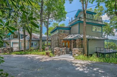 Buncombe County, Haywood County, Henderson County, Madison County Single Family Home For Sale: 2060 Azalea Ridge Road