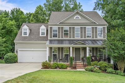 Lake Wylie Single Family Home For Sale: 1728 Fernledge Drive