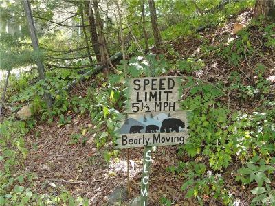 Mars Hill Residential Lots & Land For Sale: Granny Shepherd Road #2/Sectio