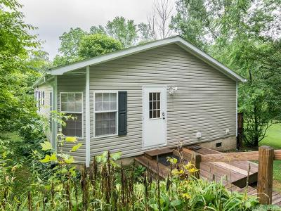 Henderson County Single Family Home For Sale: 117 S Mills River Road