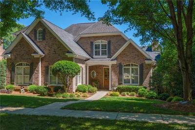 Charlotte Single Family Home For Sale: 8701 Highgrove Street