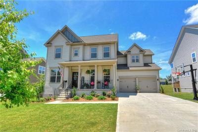 Single Family Home For Sale: 266 Sweet Briar Drive