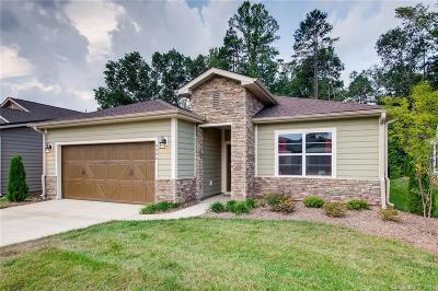 Lincoln County Single Family Home For Sale: 4906 Looking Glass Trail #439