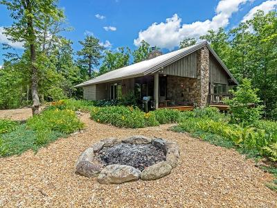 Transylvania County Single Family Home For Sale: 552 Doghobble Road #15