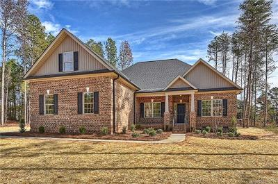 Cabarrus County Single Family Home For Sale: 5280 Ivy Springs Lane #66