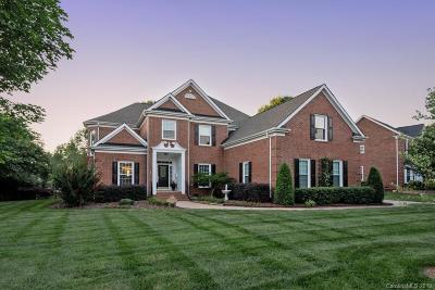 Marvin Single Family Home Under Contract-Show: 9220 Rock Water Court