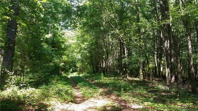 York County Residential Lots & Land For Sale: 55.112 AC Balmoral Drive