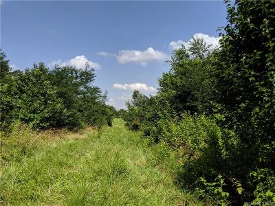 Residential Lots & Land For Sale: 14520 Beatties Ford Road