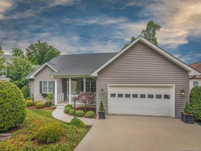 Hendersonville Single Family Home For Sale: 30 Bay Laurel Lane