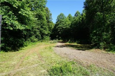 Residential Lots & Land For Sale: 12 AC Twin Creeks Road