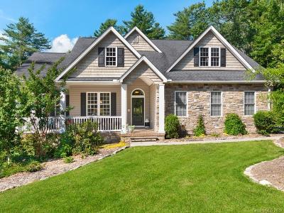 Hendersonville Single Family Home For Sale: 353 Kanuga Forest Drive
