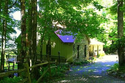 Mars Hill Single Family Home For Sale: 89 Pisgah Pass