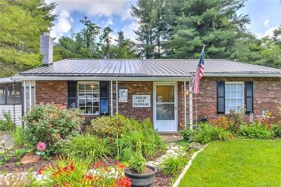 Asheville Single Family Home For Sale: 8 Waterford Court