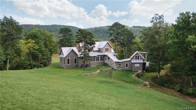 Transylvania County Single Family Home For Sale: 2034 Indian Creek Road