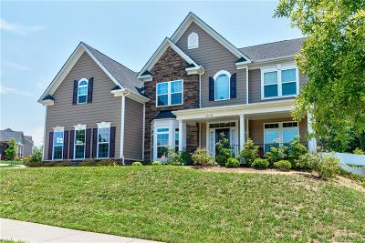 Huntersville Single Family Home For Sale: 10530 Ivy Close Road