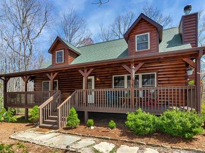 Single Family Home For Sale: 1385 Big Branch Road