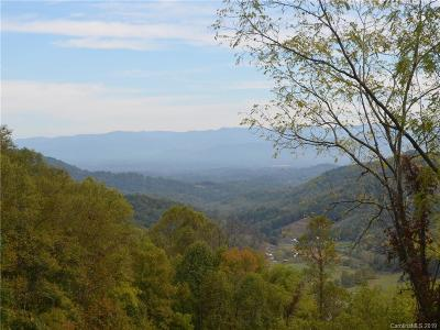 Buncombe County, Haywood County, Henderson County, Madison County Residential Lots & Land For Sale: New Leicester Highway