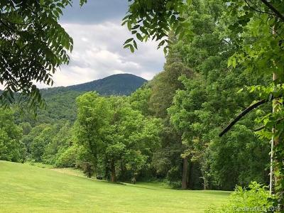 Buncombe County Residential Lots & Land For Sale: 99999 Turkey Creek Road #11