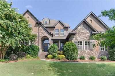 Huntersville Single Family Home For Sale: 14904 Old Vermillion Drive