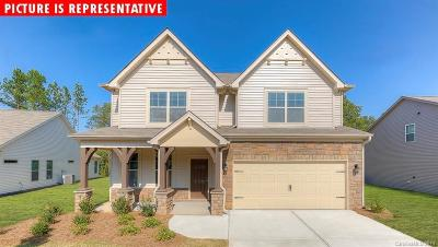 Cabarrus County Single Family Home For Sale: 2174 Black Forest Cove