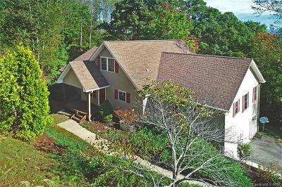 Asheville Single Family Home For Sale: 41 Gaston Mountain Road