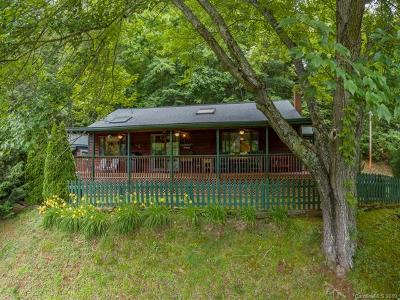 Haywood County Single Family Home For Sale: 151 Clayton Lake Road