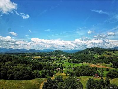 Buncombe County, Haywood County, Henderson County, Madison County Residential Lots & Land For Auction: Farmhouse Road