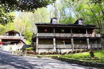 Mars Hill Single Family Home For Sale: 447 Fox Den Road