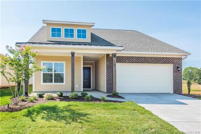 Lincoln County Single Family Home For Sale: 6248 Raven Rock Drive