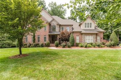 Mint Hill Single Family Home For Sale: 4936 Magglucci Place