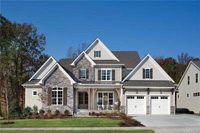 Davidson Single Family Home For Sale: 16540 Davidson Concord Road