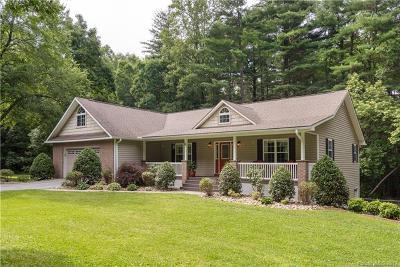 Hendersonville Single Family Home For Sale: 61 Sevier Drive