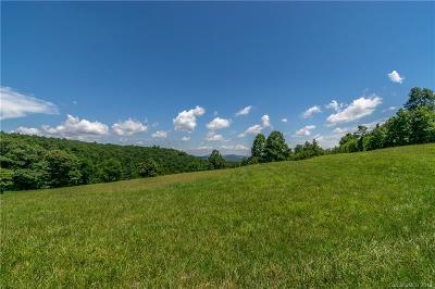Buncombe County, Haywood County, Henderson County, Madison County Residential Lots & Land For Sale: Mount Olivet Road