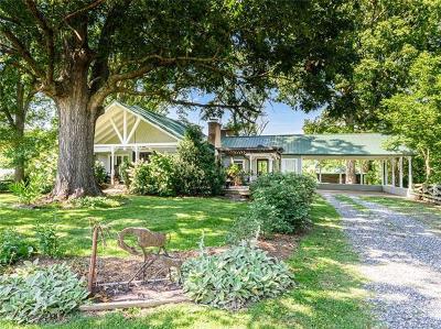 Weaverville Single Family Home For Sale: 43 Eller Ford Road
