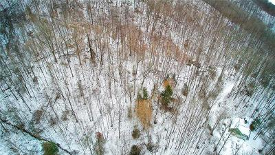 Buncombe County, Haywood County, Henderson County, Madison County Residential Lots & Land For Sale: Poverty Branch Road #4B
