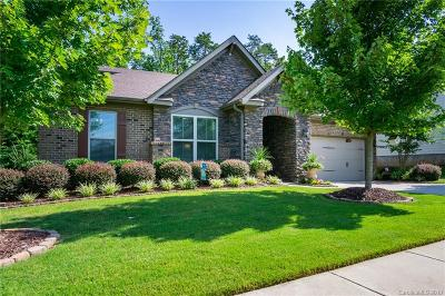 Tega Cay Single Family Home For Sale: 784 Coralbell Way