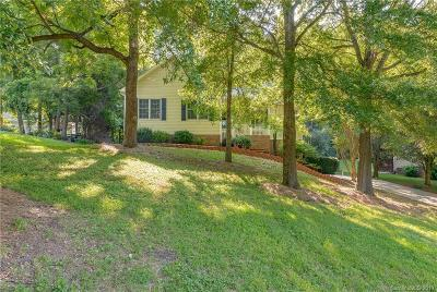 Statesville Single Family Home For Sale: 203 Springfield Road